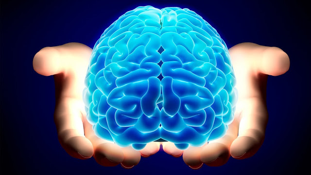 KAPAK- İnsanın Kıymeti ve Aklın Yönlendirilmesi