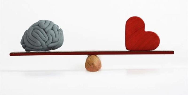 KAPAK DOSYASI / Akıl'ın Tanımı ve Mahiyeti